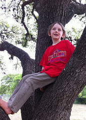 Asher relaxing in a tree