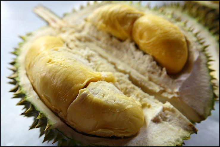 XO-durian