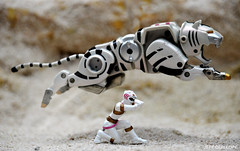White Wild Force Ranger (Toy Photography Addict) Tags: toys powerrangers sentai toyphotography whiteranger toie clarkent78 jeffquillope toyphotographyaddict whitewildforceranger gaotiger wildforcepowerrangers powerrangerstoyphotography