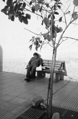 Siesta (arkkasal) Tags: siesta arbol arbor tree rua calle street banco banca bench plaza square downtown center centro salta argentina norte north hombre homen man viejo velho old elder sleep sleeping durmiendo dormir dormido blackandwhite blancoynegro bw byn rollei 35s kodak tmax iso100 100asa analogico analogo analog argentique film 35mm fomadon r09 150 rodinal monocromo monochrome streetphotography