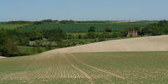 Lines of Cultivation (tjsphotobrigg) Tags: uk trees england landscape spring farming lincolnshire crops agriculture hamlet wolds withcall