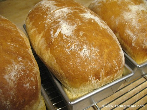 ... Fare: Farmhouse White: An Easy Basic White Sandwich Bread Recipe