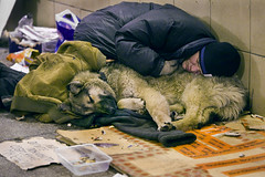 Man's Best Friend (moscowtimes) Tags: poverty dogs animals russia moscow beggars homelessness homelesspeople