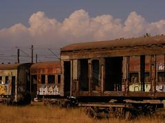 Trenes abandonados (lugar.citadino) Tags: tren trenes pasto cielo riel coches graffitis acero clavos rieles óxido maleza vagones catenarias pernos pantógrafos