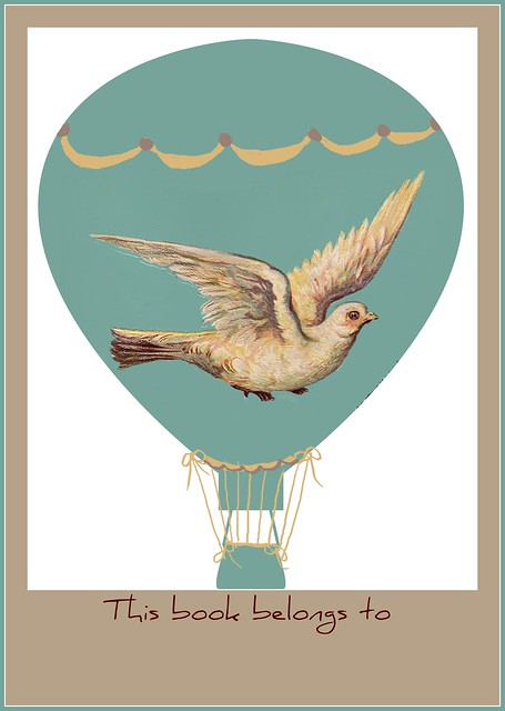 brag-monday-dove-hot-air-balloon