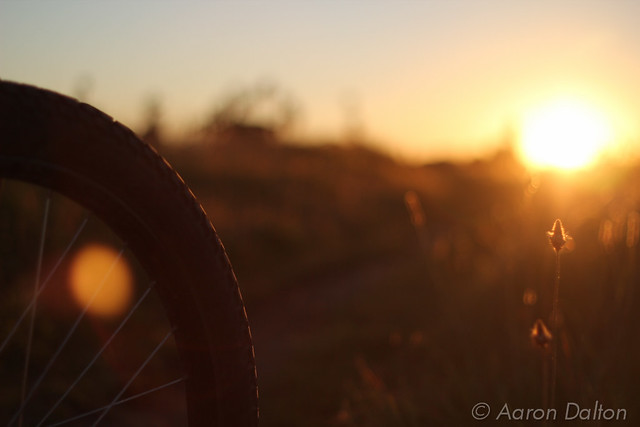 Bike Tire Facing the Sun