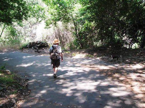 Santa Anita Canyon: Winter Creek Hike