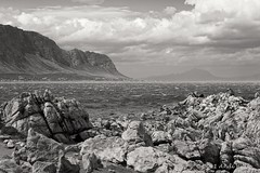 Stony Point - Explored February 23, 2011 (andiwolfe) Tags: ocean blackandwhite bw monochrome southafrica coast explore stonypoint bettysbay