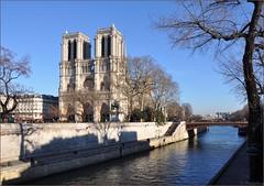 Paris : Notre Dame view from St-Michel bridge (Pantchoa) Tags: paris seine nikon hiver notredame cathdrale arbres quai fleuve sena d90 petitpont quaidumarchneuf pantchoa