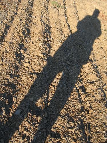 La sombra alargadísima de una ambición.....