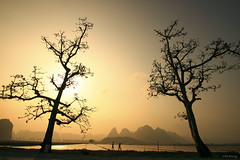 Chiu vng / Golden sunset (-clicking-) Tags: life trees sunset two sky people sun sunlight mountain field sunshine silhouette yellow landscape golden evening country twice lovely homeland goldenevening phongcnh honghn 100commentgroup vietnamesehomeland