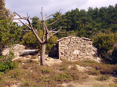 Dowry item 2 (angeloska) Tags: house architecture forest ikaria greece agriculture rahes