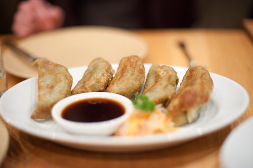 Pan-Fried Vegetable Dumplings