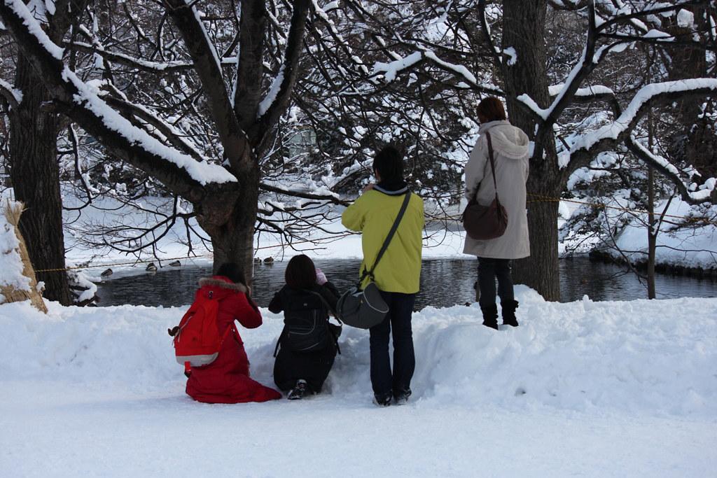 Sapporo Tourist Guide (5)