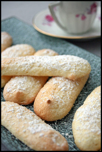 5481867525 a8122c7fed Biscuits à la cuillère (Ladyfingers)