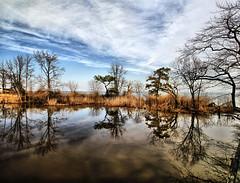 Chesapeake Bay (` Toshio ') Tags: park trees nature water bay maryland chesapeake hdr highdynamicrange chesapeakebay midatlantic toshio heritage2011