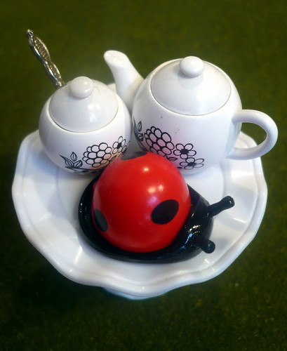 60/365: Tea and Lady Bug