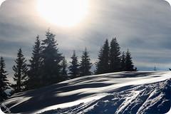 Snow <3 (Rob'Eos) Tags: schnee winter sun snow ski mountains alps cold love canon eos flickr foto fotografie skiing picture sunny berge persons alpen sonne skifahren piste kitzbhel robeos