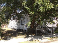 Danneel 3515 (Preservation Resource Center of New Orleans) Tags: road new 2 home la orleans louisiana auction authority property center nora april prc resource preservation rh realm redevelopment 2011 llt 3515 daneel 1152011 redmellon
