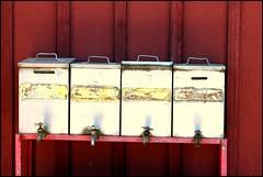 Four Spigots (greenthumb_38) Tags: california railroad museum train 28135mm perris oerm orangeempirerailwaymuseum canon40d jeffreybass