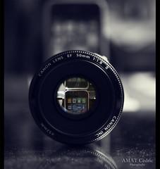 [67/365] Iphone Lens