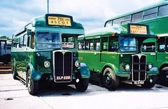 Greenline T504 AEC Regal /Chiswick Works (Ledlon89) Tags: bus london coach transport greenline lt londonbus aecregal chiswickworks