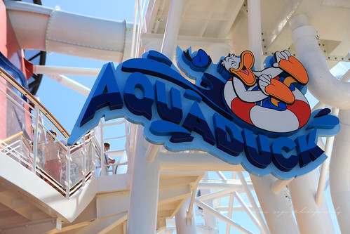 aquaduck sign