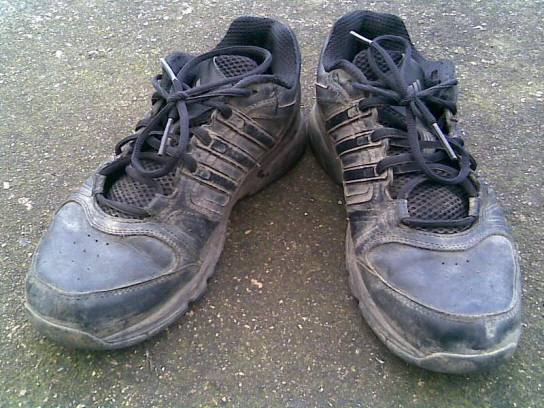 adidas_trainers