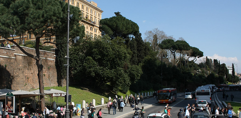 La Place du Colisée, bordée d'arbres de toutes sortes