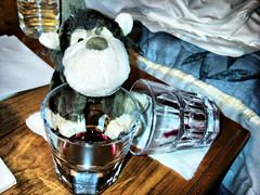0857 Red red wine - just the beginning (SierPinskiA) Tags: monkey holidaymonkey dynamicphotohdr samsungpixon