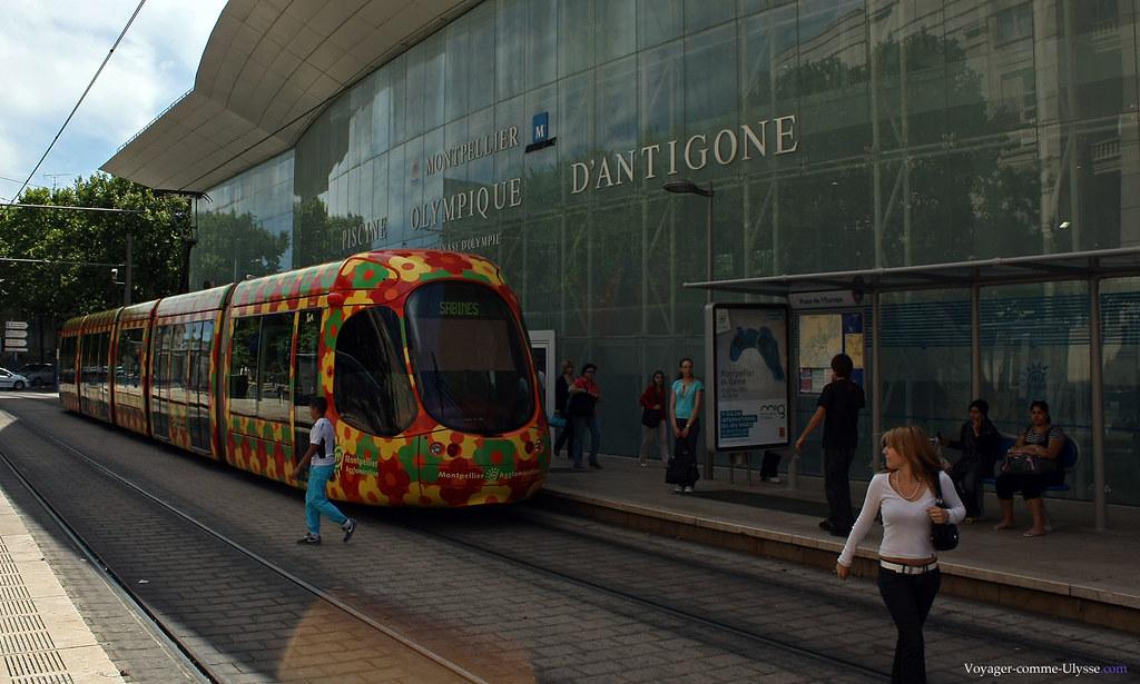 Le tramway s'arrête juste en face de la piscine Olympique d'Antigone