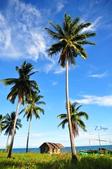 Under (Z Joya) Tags: blue vacation skies philippines under down falling hut kubo coconuts amen libre thehouse pilipinas buko masaya pagkain kasi namasarap