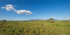 Tsavo National Park - 14mm (Joost N.) Tags: africa park mountains green landscape bush nikon angle kenya african wide safari bergen nikkor tsavo landschap 14mm sarova d700