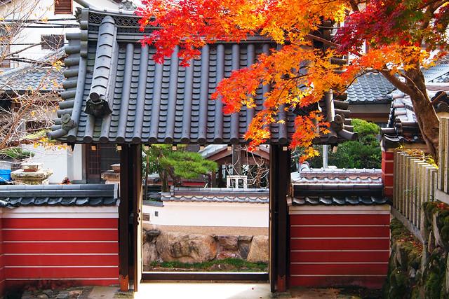 20101118_140159_當麻寺