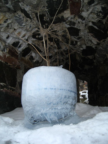 flower pot made of ice