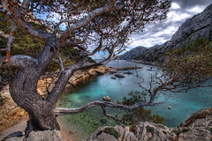 The Cove 1 (marcovdz) Tags: france tree pine sailboat creek boat marseille pin cove mooring provence bateau morgiou arbre hdr voilier calanque 3xp crique mouillage