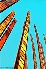 Grass Blades - Revisited (J.Sod) Tags: seattle slr art film grass analog 35mm 50mm minolta kodak minoltax700 ishootfilm 100 publicart filmcamera 135 emeraldcity seattlecenter asa100 x700 anolog jetcity ektar raincity grassblades harrisonstreet colorfilm minoltaslr johnfleming kodakektar ektar100