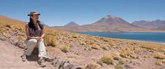 Corcel Indómito (Cristian Becker) Tags: sanpedrodeatacama soniakoch lagunamiscanti d810 2470mmf28g