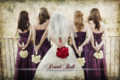 The Girls and the Bouquets (DB-Photography) Tags: wedding groom bride marriage bridesmaids bouquet acr gown bridalparty weddingphotography davidball bridalphotography davidballphotography thetexturedbride davidballallworldwiderightsreserved