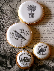 Black & white cookies (nice icing) Tags: white black tree birds ink blackwhite cookie nest painted biscuit eggs icing cavallini icedbiscuits stampedcookies