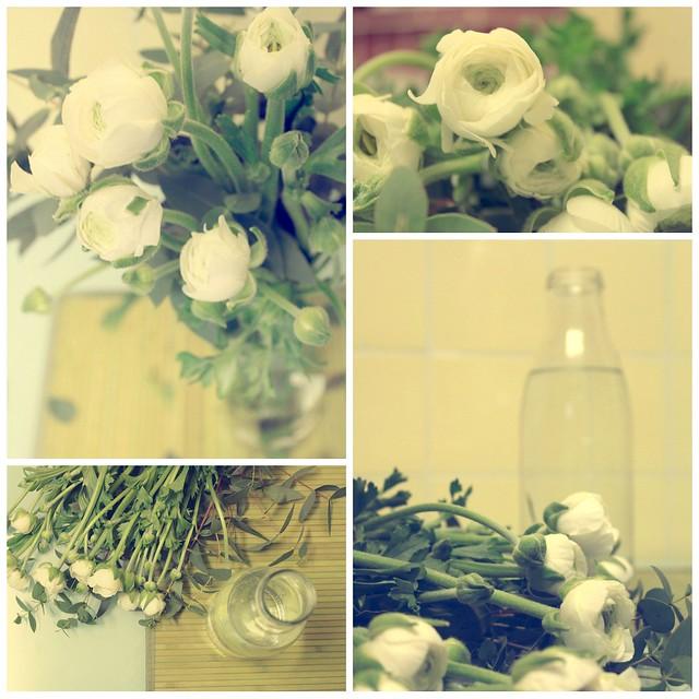Collage flores en mi cocina