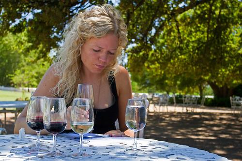 Wine tasting @Boschendal