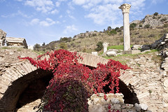 Red_6887 (hkoons) Tags: turkey ancient ruins asia aegean mesopotamia augustus selcuk ephesus anatolia seluk efes ancientruins anatalya ionia outdoormuseum alexanderthegreat aegeansea sevenwondersoftheworld ancientcity asiaminor thracians yavan yauna androklos ayasuluk apasas lysimachos ahhiyavakingdom yavnai