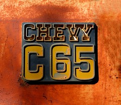 Chevy C65 (davidwilliamreed) Tags: old metal truck emblem georgia rust rusty weathered scratched crusty patina bostwick tectures