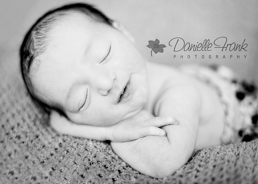 CT Newborn Photographer|CT Photographer|CT Photographers