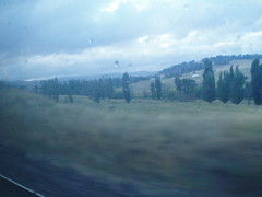 Arthur Streeton Country (Figgles1) Tags: railroad train pacific indian railway nsw newsouthwales dirtywindow throughthewindow indianpacific p2090187
