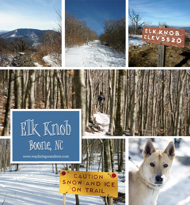 Elk Knob Collage