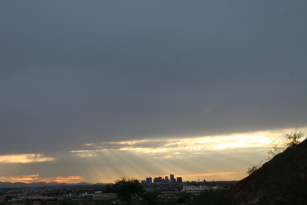 Phoenix Sun-Rays