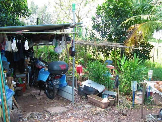 31 kampung near flyover