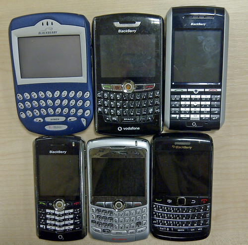 Evolution of the blackberry